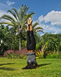 regenere-yoga